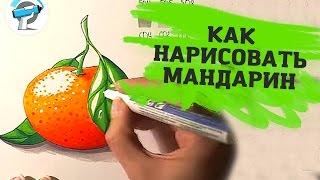РИСУЕМ ПОЭТАПНО МАНДАРИН | Как Научиться Рисовать Маркерами ~ Урок от ArtMarkers.ru