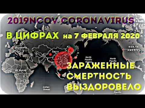 #КОРОНАВИРУС ✧ 2019-nCoV ✦ В ЦИФРАХ ✦ на 7 ФЕВРАЛЯ 2020