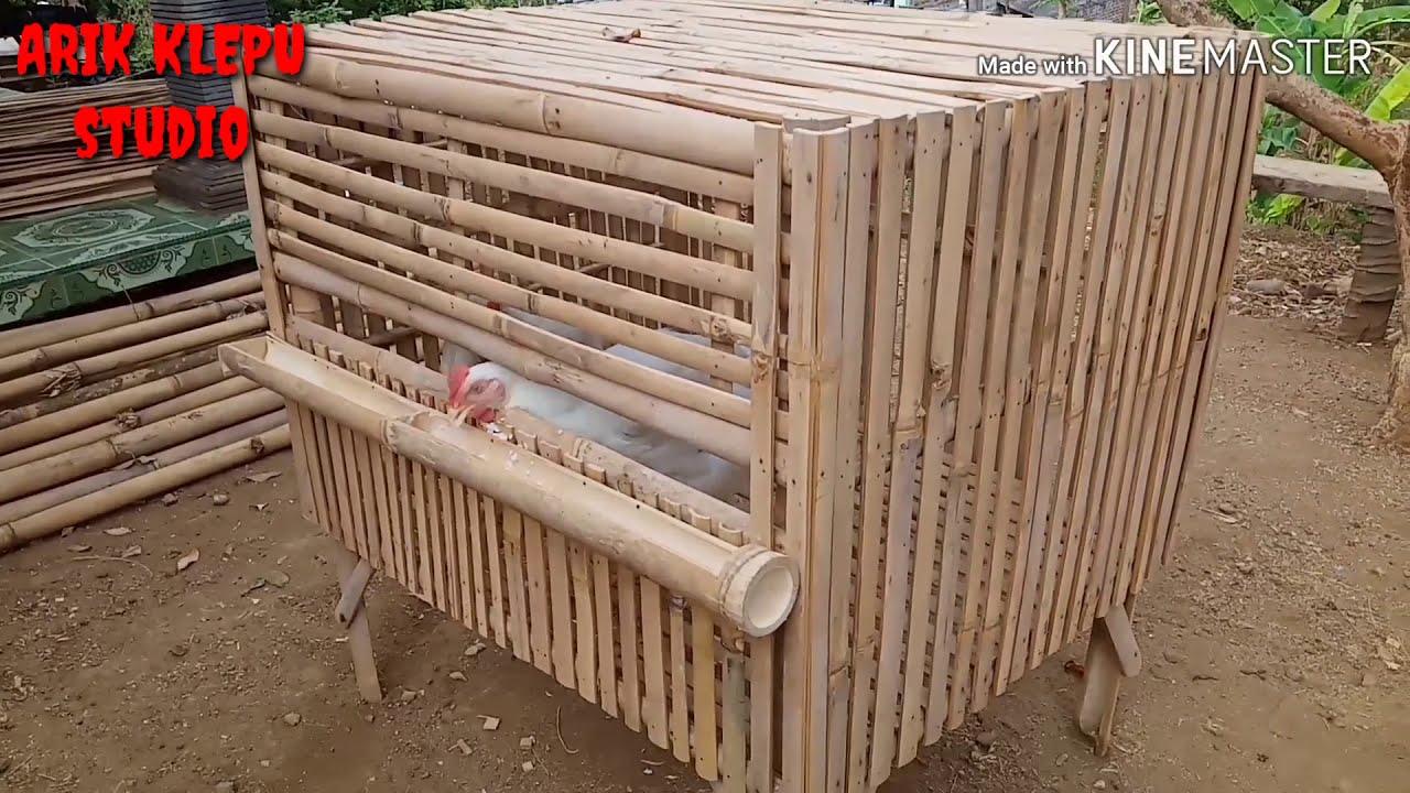 Membuat Kandang Ayam Kampung Sederhana Youtube Model kandang ayam dari bambu