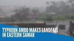 Typhoon Ambo makes landfall in Eastern Samar