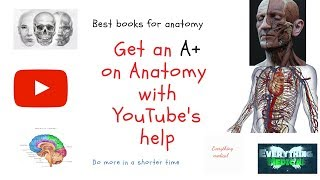 Tips for studying anatomy and best anatomy youtube channels