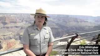 Grand Canyon National Park (The California Condor)