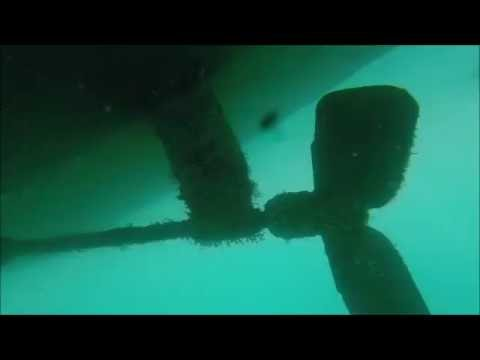 Underwater hull fouling, New Zealand.