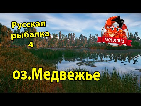 Русская рыбалка 4. Линь Золотистый. Усач обыкновенный. Медвежка