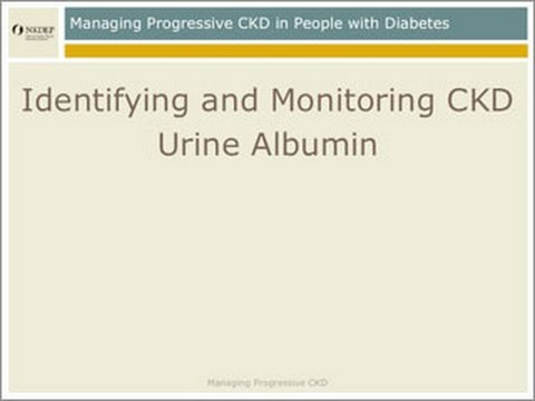 CKD Management: Identify And Monitor - Urine Albumin
