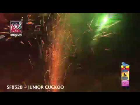 Shogun Cuckoo Cuckoo