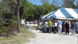 Welcome to the Sanibel Shell Festival!