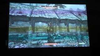 Skyrim Gameplay on Projector 1080p