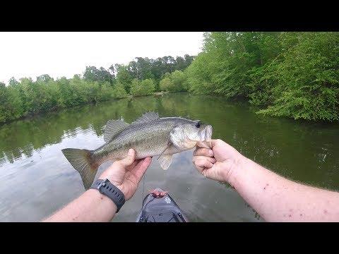 Greenville Greenway Pond Bass