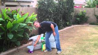 How to Overseed With Perennial Rye Grass.mp4