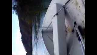 Quicksilver 410 -  mariner 10   HR