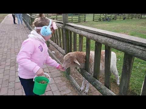 Tourism in the Spotlight: Holmeleigh Farm in Port Elizabeth