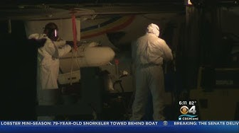 Aerial Spraying For Mosquitoes Over Weston