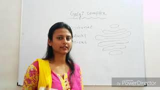 Golgi Complex | NCERT Biology for Class 11 | Golgi Complex Class 11