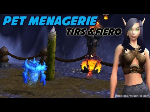 Tirs and Fiero - Pet Menagerie