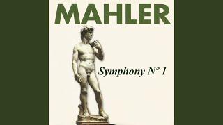 Symphony No. 1 in D Major: I. Langsam. Schleppend