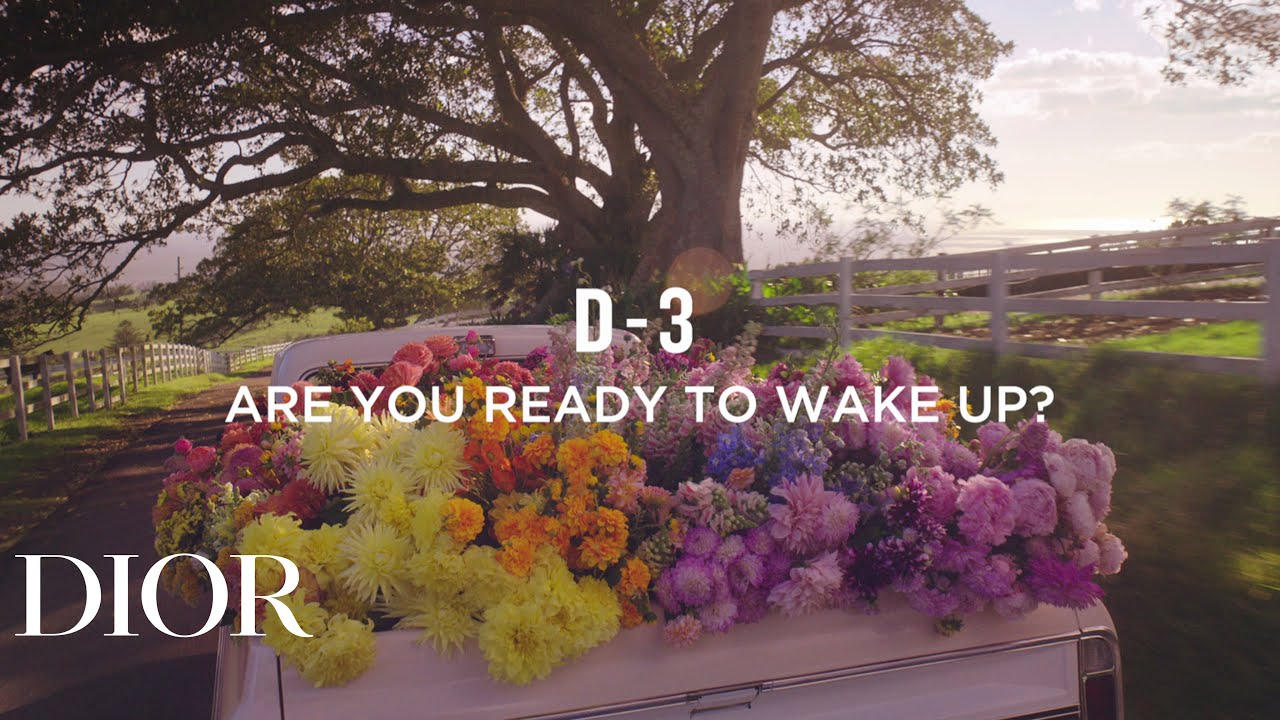 D-3, ARE YOU READY TO WAKE UP?