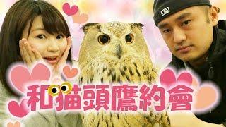 來自台灣的SENKA在網路上看到可愛的貓頭鷹們的照片,便深深地迷上了牠們...