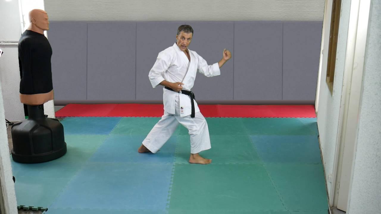 Karate: Hip rotation in Gyaku Hanmi [karate-blog com]