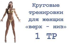 Круговые тренировки для женщин «верх   низ» (1 тр)