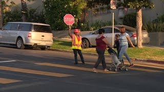Download Brave School Crossing Guard Fights Off Woman Trying to Kidnap An 8-Year-Old Girl Mp3 and Videos