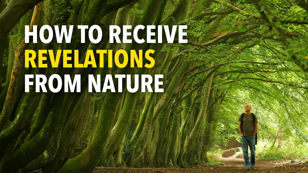 How to receive revelations from Nature by ecologist Stephen Harding