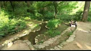 Download lagu El Jardí Botànic Històric de Barcelona