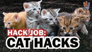 Cat Hacks, HACK JOB #6