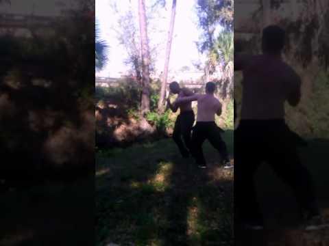 Champ vs kelly shaw nsb fight