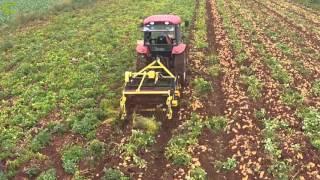 Çift Bantlı Krom Kaplı Patates Sökme Makinesi - YN 15 PS