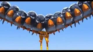 Злые птички мультфильм, смотреть смешные короткие  мульты