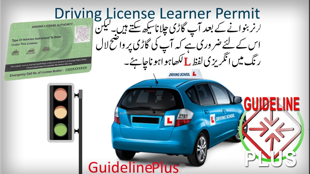 Driving license learner Form Learner permit Driving form fillup DLIMS PITB  Traffic License لرنر پرمٹ