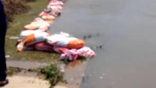 Inundaciones en argentina 2015 - Goya, Corrientes, Argentina