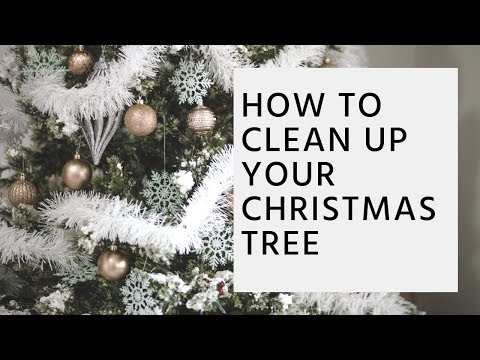 How To Clean Up Your Christmas Tree