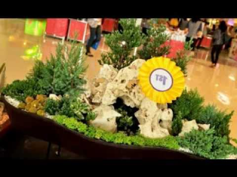 Dish garden decorating ideas YouTube
