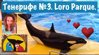 VLOG Путешествие на Тенерифе №3. Идем в Лоро Парк Loro Park Loro Parque Канарские острова.(2 часть Тенерифе http://www.youtube.com/edit?o=U&video_id=CCWZhZVbk-8 Группа ВК: http://vk.com/eleonorka_d_youtube Моя страница ВК: ..., 2015-06-27T13:59:03.000Z)