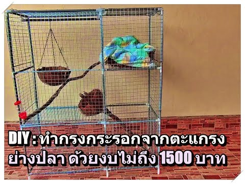 DIY: made squirrel house form barbecue grate ทำกรงกระรอกจากตะแกรงย่างปลา ด้วยงบประมาณไม่ถึง 1500 บาท