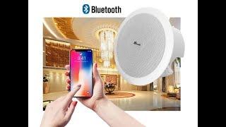 Loa âm trần Bluetooth burmester C230, 4.0 Căn hộ, shop, nhà chờ, spa, phòng ngủ