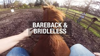 Riding Bareback and Bridleless!