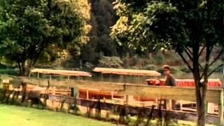 Kaadhal Vaanile Video Song - En Jeevan Paduthu -Karthik, Saranya - S. Janaki - Ilaiyaraja