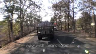 Travelling through the roads of Kanha