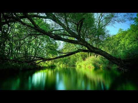 Видео Бог света в греции