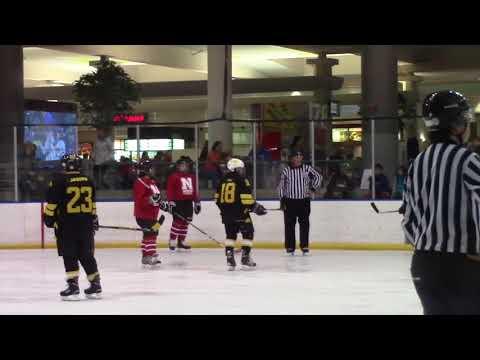 Lady Ice Hawks Vs. Nebraska 11/4/17 part 1