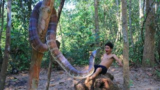 Amazing Catch Big Snake for Cooking then Eating Delicious