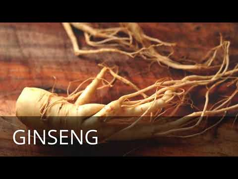 27 5 Health Benefits Of GINSENG FOR MEN   Most Healthiest Herbs For Men In the World