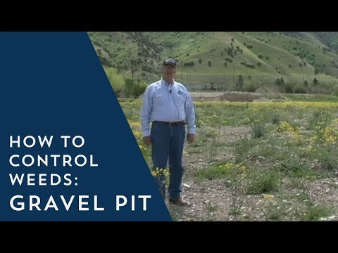 How To Prevent Weeds Gravel Pit