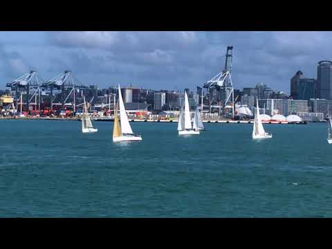 Yachts Sailing out of Auckland Harbour