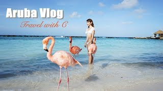 它們是真的! 美到像P圖的紅鶴私人海島 | Aruba旅行Vlog |  Pieces of C - Celine thumbnail