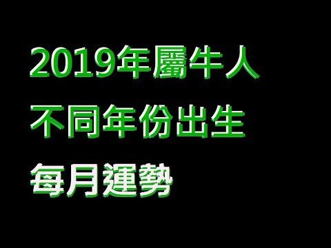 ☯️2019年屬牛人不同年份出生的🐂全年運勢大全[2019年🐂每月運勢][純文字]