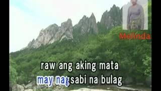 (12) Bulong Ng Damdamin - (Imelda Papin) Melinda
